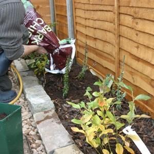 Autumn Soil Care