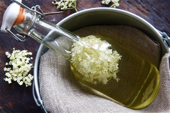 Things to Do With Elderflower