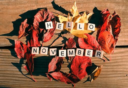 November Garden Check List