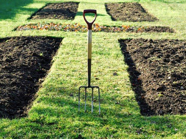 The 5 Step Garden Makeover